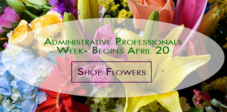 Send flowers for Administrative Professionals Appreciation In rochester and Webster NY